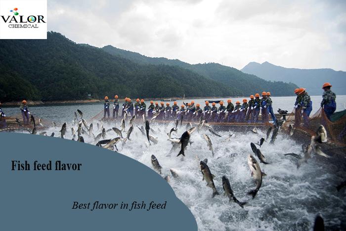 fish feed flavor