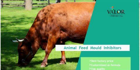mold inhibitors